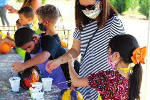 Pumpkin patches celebrate fall's beauty