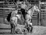 Ranch rodeo winners named